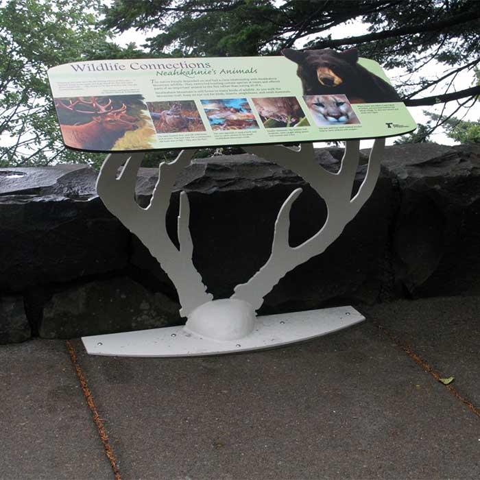 Neahkahnie Rockwall Wildlife Connections