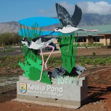 Kealia Pond Visitors Center
