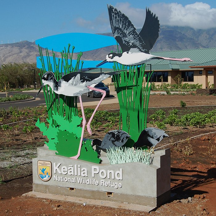 The Alchemy of Design: Keālia Pond National Wildlife Refuge